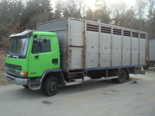 Top DAF AE 45 /Viehtransporter Koffer LKW gebraucht kaufen, Preis 9000 &JY_17