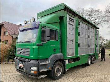 Tiertransporter LKW MAN 26.350 LX Finkl 3 Stock Hubdach Lift