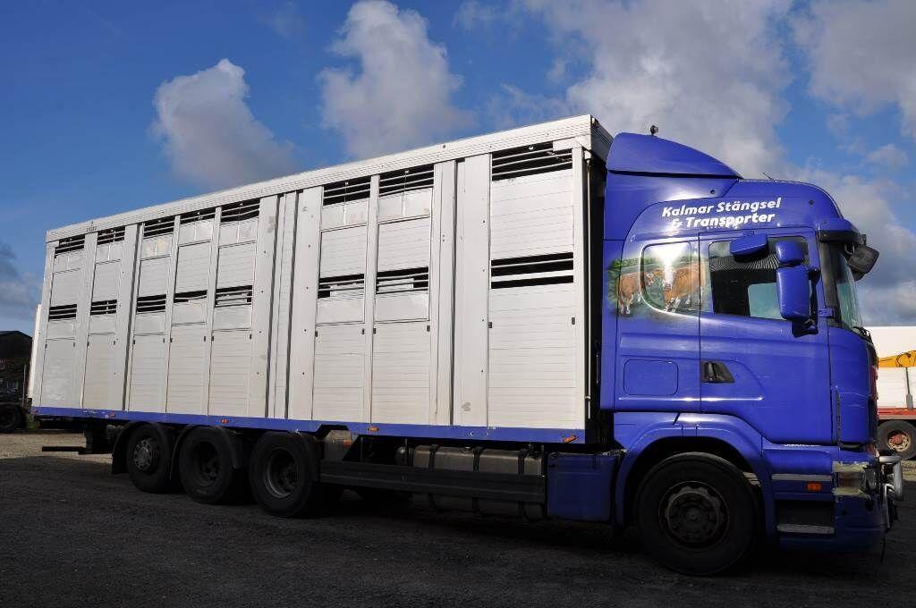 Tiertransporter LKW SCANIA R480LB8X4*4HNB