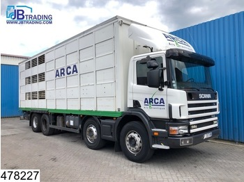 Scania 114 380 8x4, Manual, Retarder, Animal transport, 3 layers, Remote - Tiertransporter LKW