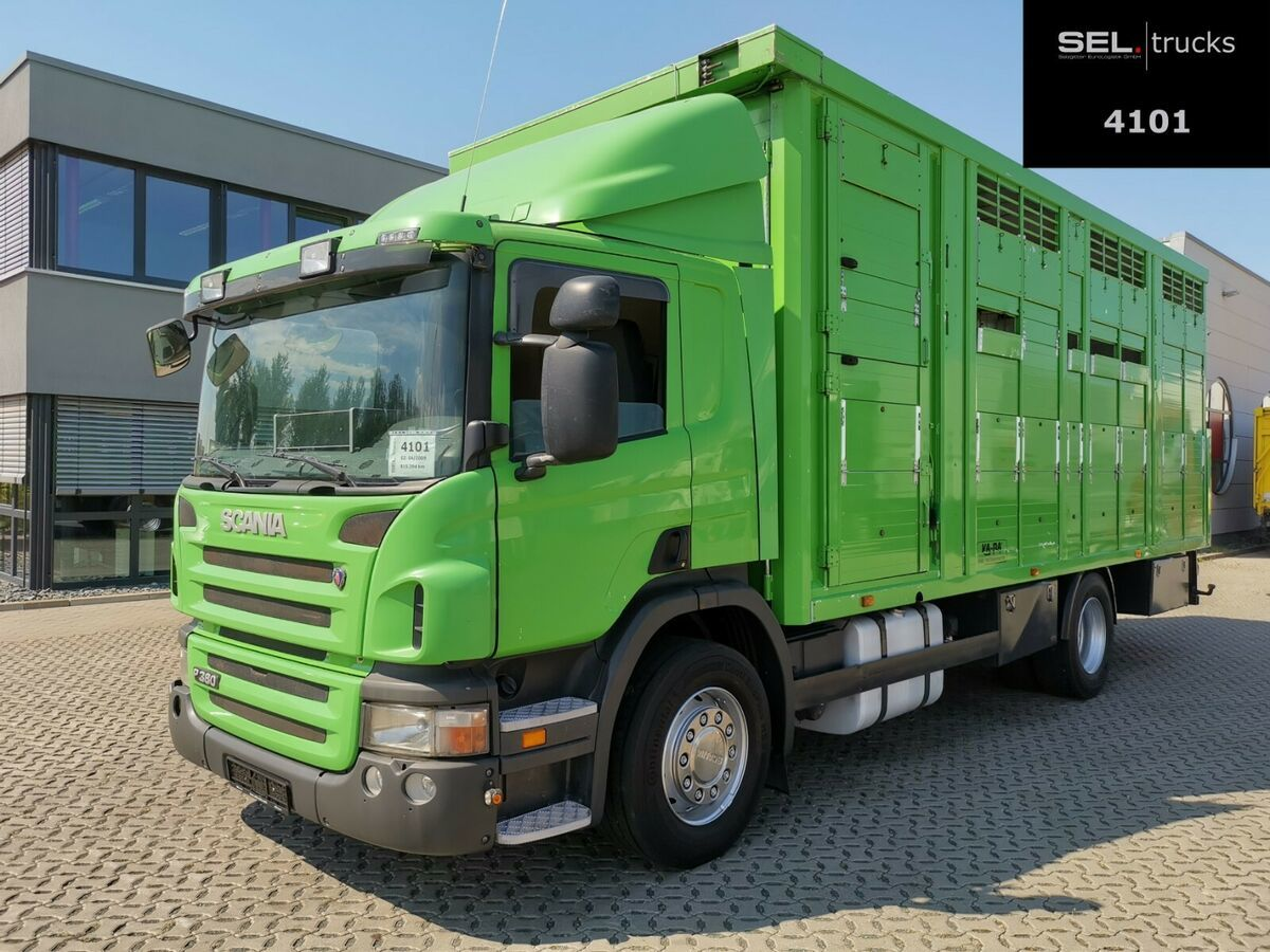 Tiertransporter LKW Scania P380DB4X2MNA / 2 Stock