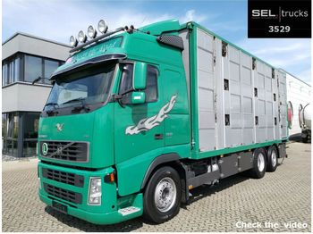 Tiertransporter LKW Volvo FH 520 6x2 / 3 Stock / German
