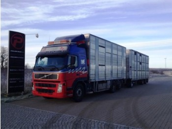 Volvo FM12 420 Animal transport with henger - Euro 3 - Tiertransporter LKW