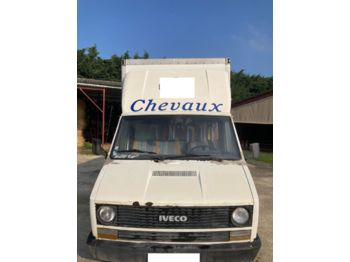 Koffer Transporter IVECO DAILY